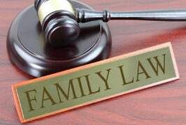 What are the Most Common Family Law Issues?